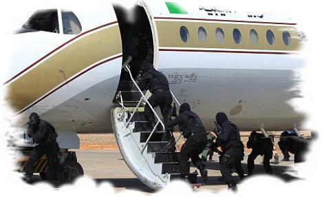 план охраны объекта при угрозе или совершении террористического акта